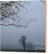 Weather Wood Print