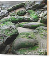 Weathered By Tides Wood Print