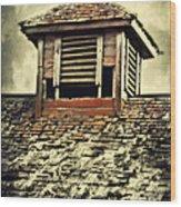 Weathered Cupola Wood Print