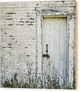 Weathered Door Wood Print by Diane Diederich