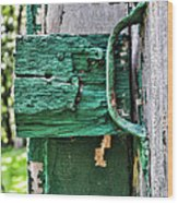 Weathered Green Paint Wood Print