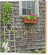 Weathered Maine Seacoast Barn Wood Print by Thomas Schoeller