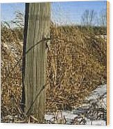 Weathered Old Fence Post Wood Print