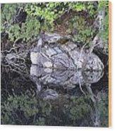 Weathered Reflection Wood Print