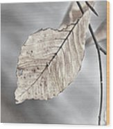 Weathered Remnant Of Summer Wood Print