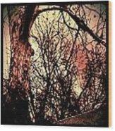 Web Of Tree Mauve Wood Print