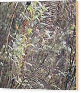 Web We Weave Wood Print