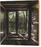 Web Window Wood Print