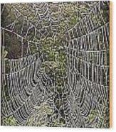 Web2hdr Wood Print