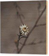 #weed Wood Print