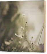 Weeded Desire - Dark  Wood Print