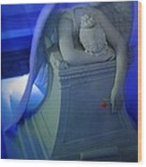 Weeping Angel Front View Wood Print