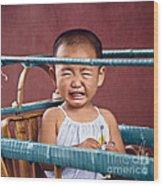 Weeping Baby In His Buggy Wood Print