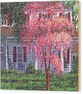 Weeping Cherry By The Veranda Wood Print