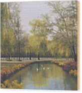 Weeping Willow Wood Print by Diane Romanello