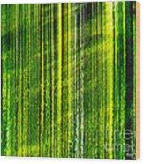 Weeping Willow Tree Ribbons Wood Print