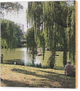 Weeping Willows In Central Park  Wood Print