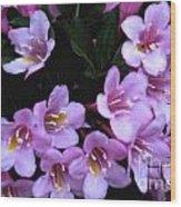 Weigela Blossoms Wood Print
