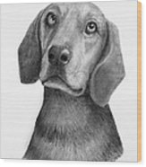 Weiner Dog Wood Print by Lorraine Foster