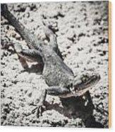 Weird Lizard Wood Print