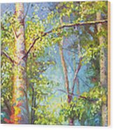 Welcome Home - Birch And Aspen Trees Wood Print