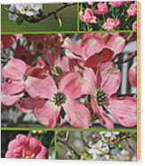 Welcome Spring Collage Wood Print