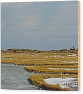 Welcome To Assateague Wood Print