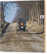 Welcome To Elkart County Wood Print