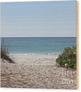 Welcome To The Beach Wood Print by Carol Groenen