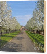Welcome To The Farm Wood Print