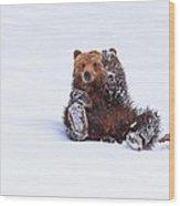 Welcome To Yellowstone Wood Print
