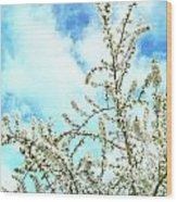 Welcome Vintage Spring Wood Print