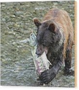 Well Done Little Bear Wood Print