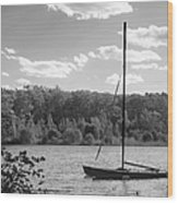 Wellesley College Waban Lake Wood Print by University Icons