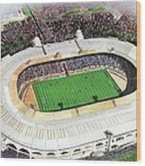 Wembley Stadium Wood Print