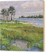 Wentworth By The Sea Wood Print by Laura Lee Zanghetti