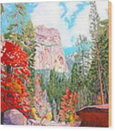 West Fork - Sedona Wood Print by Steve Simon