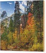 West Fork Wonders  Wood Print by Saija  Lehtonen