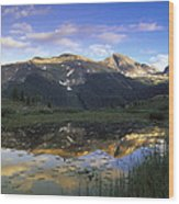 West Needle Mountains Reflected In  Pond Wood Print