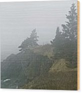 West Quoddy Head Lighthouse In Fog  Wood Print