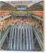 West Railway Station In Beijing Wood Print