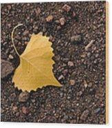 West Texas Autumn Wood Print