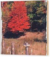 West Virginia Country Roads - Autumn Colorfest No. 1 - Germany Valley Pendleton County Wv Wood Print