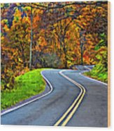 West Virginia Curves Painted Wood Print