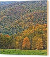 West Virginia High Wood Print