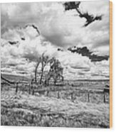 Western Kansas Wood Print