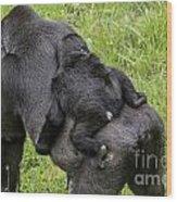 Western Lowland Gorilla 1 Wood Print