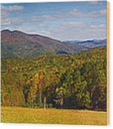 Western North Carolina Horses And Mountains Panorama Wood Print