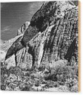 Western Sites Wood Print by John Rizzuto