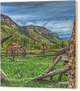 Western Solitude Wood Print